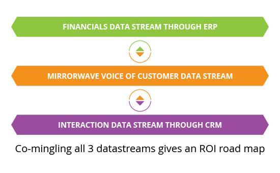 Integration and Alignment - ERP CRM & VOC - MirrorWave